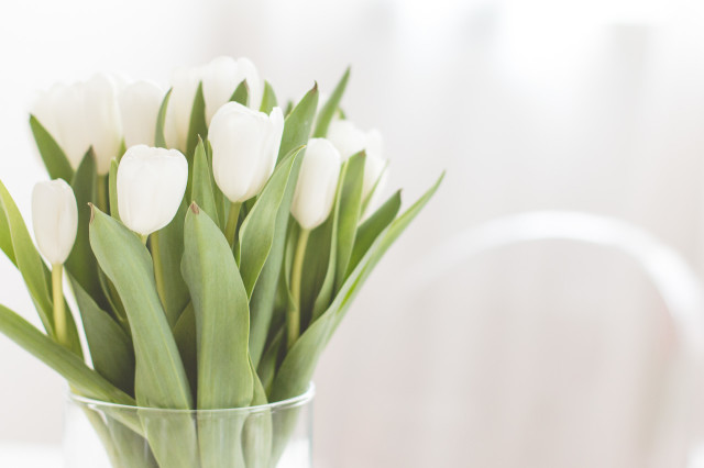 5-tips-keep-your-fresh-flowers-longer-15-640x426